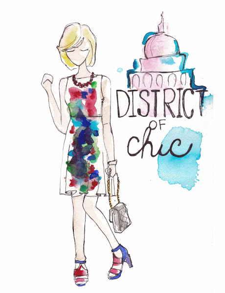districtofchiclaceeswan-1