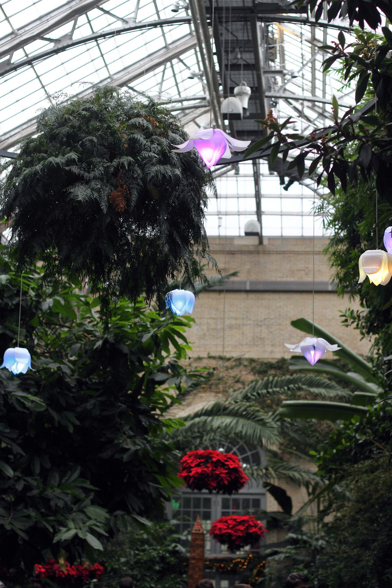 holiday display at U.S. Botanic Garden