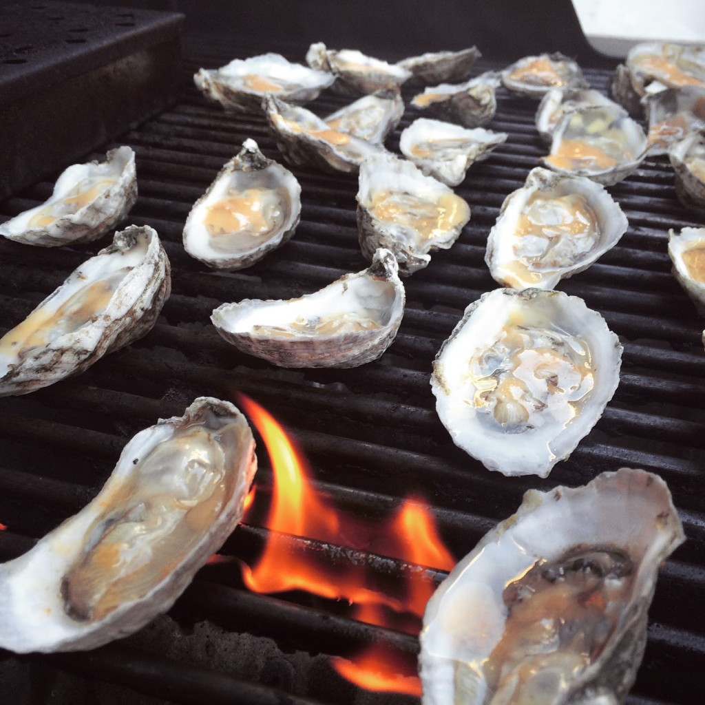 BBQ Oysters Recipe