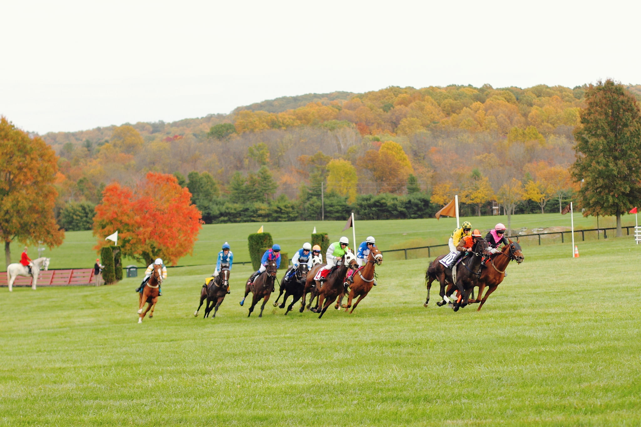 Fall Gold Cup