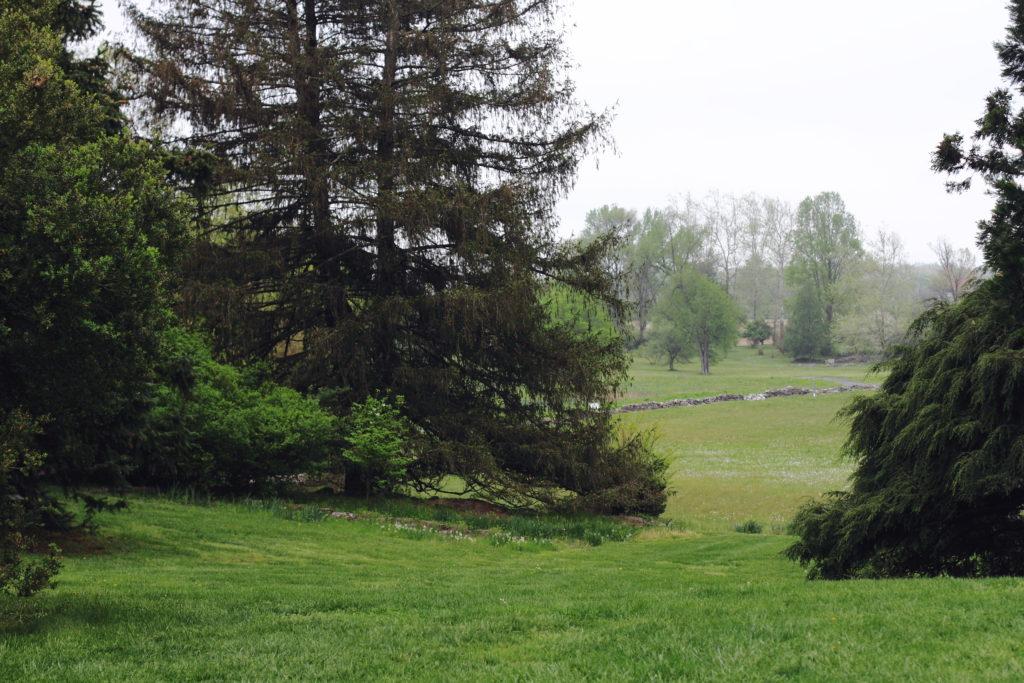 Virginia State Arboretum