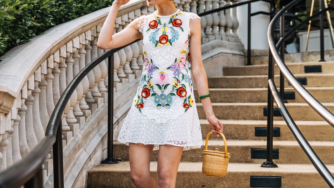 Saylor embroidered lace dress