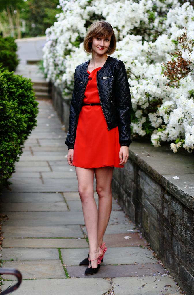 red Sea dress and Miu Miu wedges