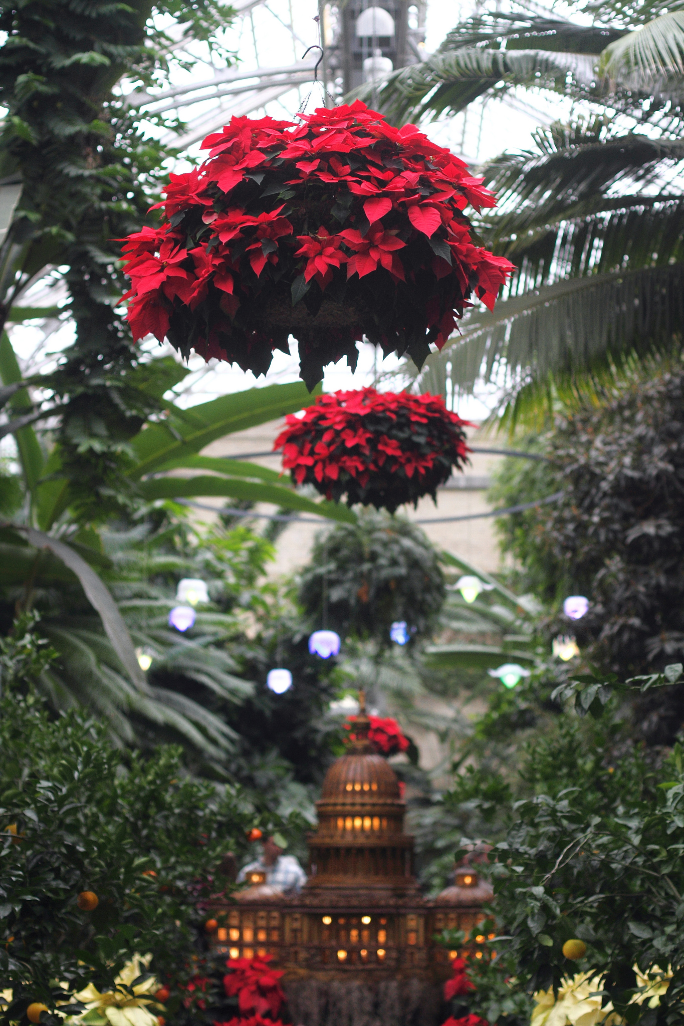 holiday display at U.S. Botanic Garden