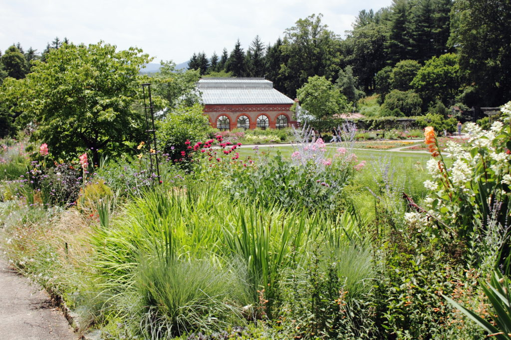 The Biltmore gardens