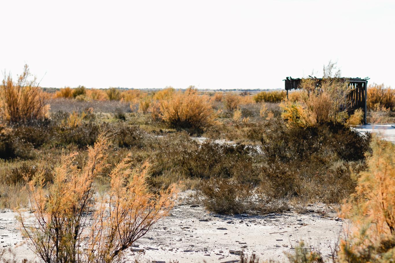 Bottomless Lakes, New Mexico