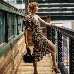 Jonathan Simkhai leopard dress