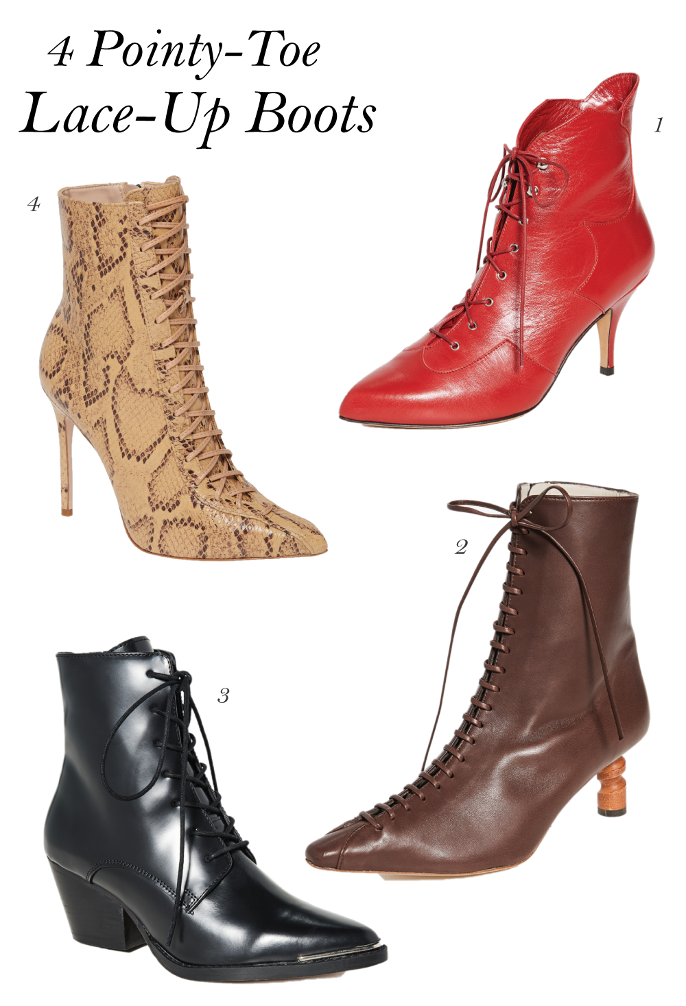 4 Pointy-Toe Lace-Up Boots